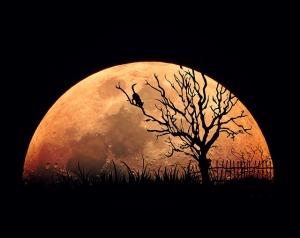 moon-744184_640